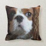 Cavalier King Charles Spaniel cushion pillow