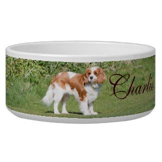 Cavalier King Charles Spaniel custom name pet bowl