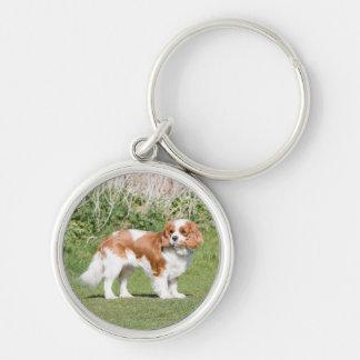 Cavalier King Charles Spaniel dog beautiful photo Key Ring