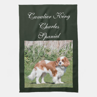 Cavalier King Charles Spaniel dog beautiful photo Towels