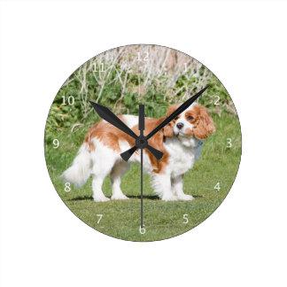 Cavalier King Charles Spaniel dog beautiful photo Wallclock