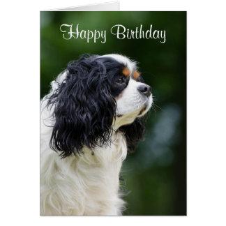 Cavalier King Charles Spaniel dog custom birthday Greeting Card
