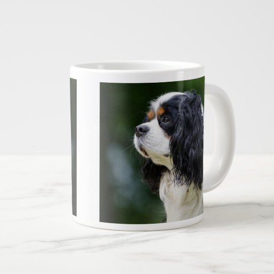 Cavalier King Charles Spaniel Dog Lovers photo Large