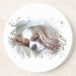 Cavalier King Charles Spaniel Drink Coaster