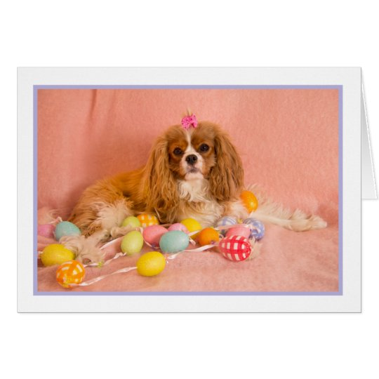 Cavalier King Charles Spaniel Easter Greeting Card