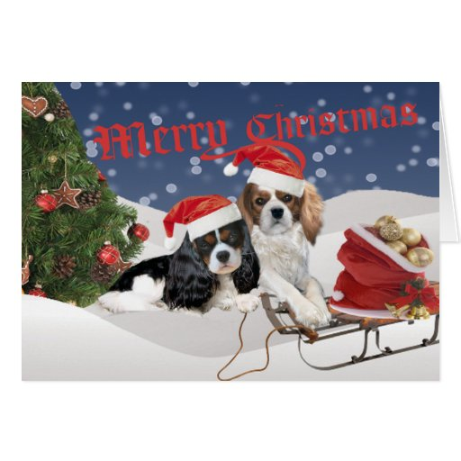 Cavalier King Charles Spaniel Merry Christmas Greeting Cards