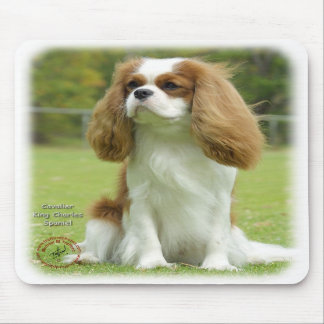 Cavalier King Charles Spaniel Mouse Mats