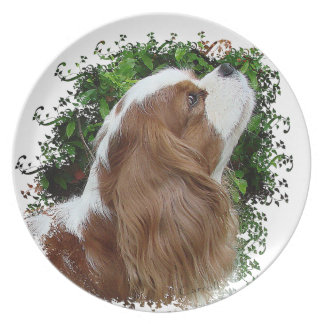 Cavalier King Charles Spaniel Party Plate