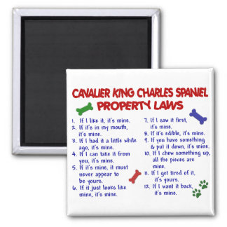 CAVALIER KING CHARLES SPANIEL Property Laws 2 Square Magnet