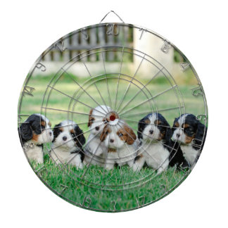 Cavalier King Charles Spaniel puppies Dartboard