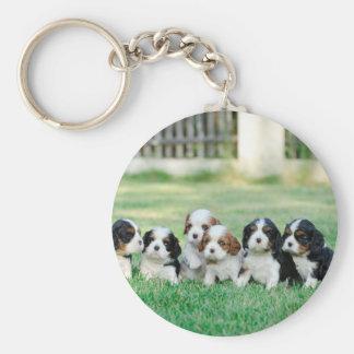 Cavalier King Charles Spaniel puppies Key Ring