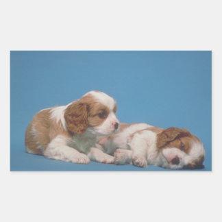 Cavalier King Charles Spaniel Puppies Rectangular Sticker