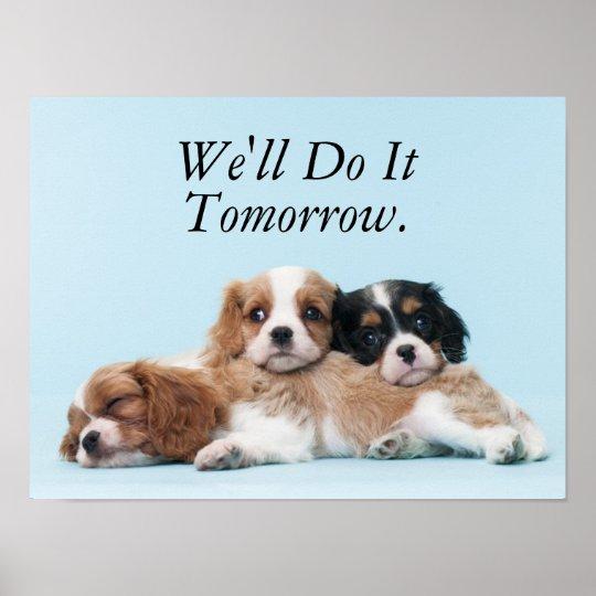 Cavalier King Charles Spaniel Puppies Sleeping Poster