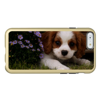 Cavalier King Charles Spaniel Puppy behind flowers Incipio Feather® Shine iPhone 6 Case