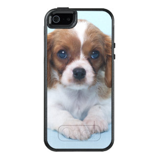 Cavalier King Charles Spaniel Puppy OtterBox iPhone 5/5s/SE Case