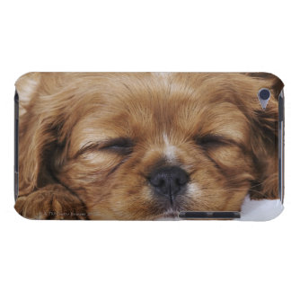 Cavalier King Charles Spaniel puppy sleeping Barely There iPod Cover