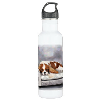 Cavalier King Charles Spaniel - Remington 710 Ml Water Bottle
