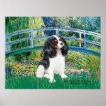 Cavalier King Charles (Tri 6) -Lily Pond  Bridge
