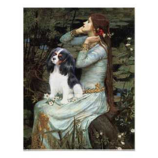 Cavalier King Charles (tri color) - Ophelia Seated Poster