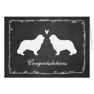 Cavalier King Charles Wedding Congratulations Card