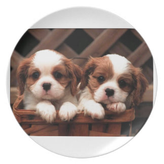 Cavalier Puppies Party Plate