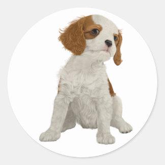 Cavalier Puppy Classic Round Sticker