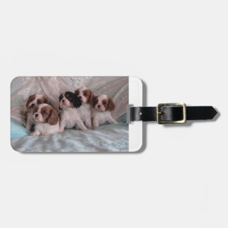 Cavalier Puppy Luggage tag