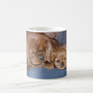 Cavalier Ruby Father & Son Basic White Mug