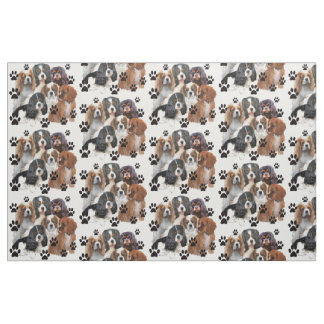 Cavalier Spaniel Colors Fabric