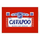 Cavapoo