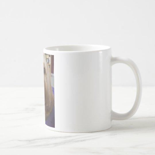 Cavapoo or Cavadoodle products Coffee Mug