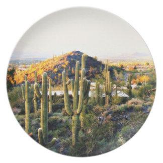 Cave Creek  Landscape Custom Melamine Plate
