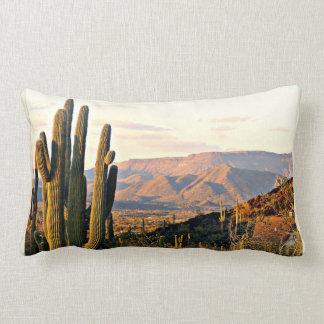 Cave Creek Landscape @ Sunset Pillow