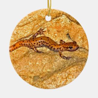Cave Salamander Christmas Ornament