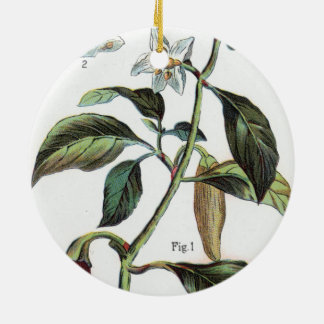 cayenne pepper Flower Christmas Ornament