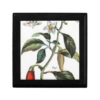 cayenne pepper Flower Jewelry Box