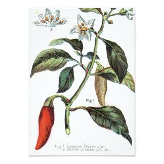 "cayenne pepper Flower 5"" X 7"" Invitation Card"