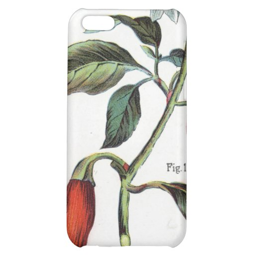 cayenne pepper Flower Case For iPhone 5C