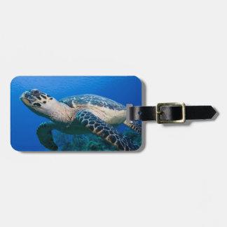 Cayman Islands, Little Cayman Island, Underwater 2 Luggage Tag