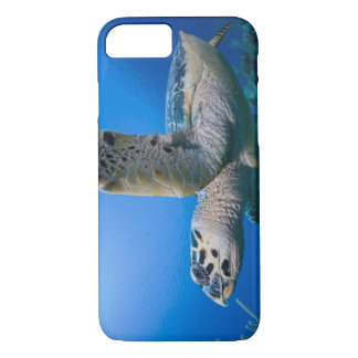 Cayman Islands, Little Cayman Island, Underwater iPhone 8/7 Case