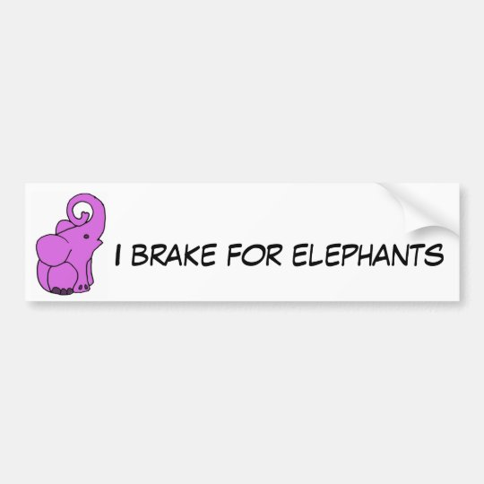 CB- I brake for elephants bumper sticker