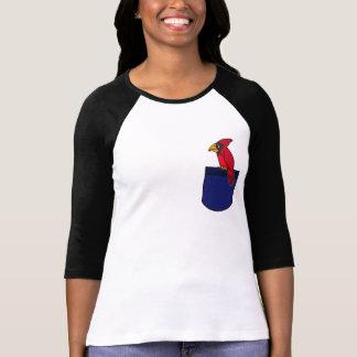 CC- Cardinal in a Pocket Shirt