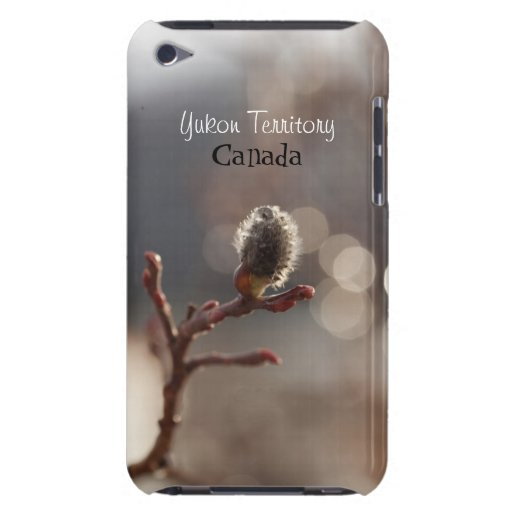 CDR Catkin Dream iPod Touch Cover