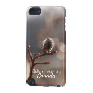 CDR Catkin Dream iPod Touch 5G Cover