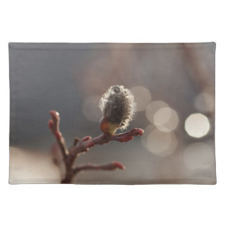 CDR Catkin Dream Place Mat
