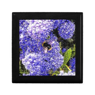 Ceanothus Flower Bee Gift Box