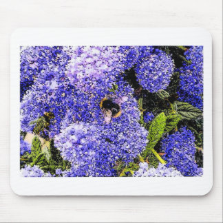 Ceanothus Flower Bee Mouse Pad