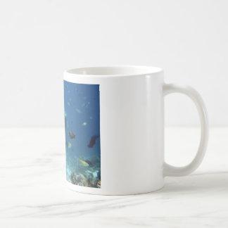 Cebu Diving.jpg Basic White Mug