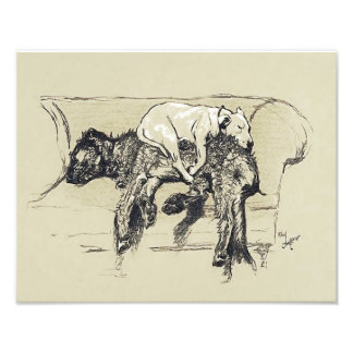 "Cecil Aldin 1902 ""Lazy Dogs Sleeping on Couch"" Photograph"