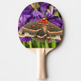 Cecropia Moth in flower garden Ping Pong Paddle